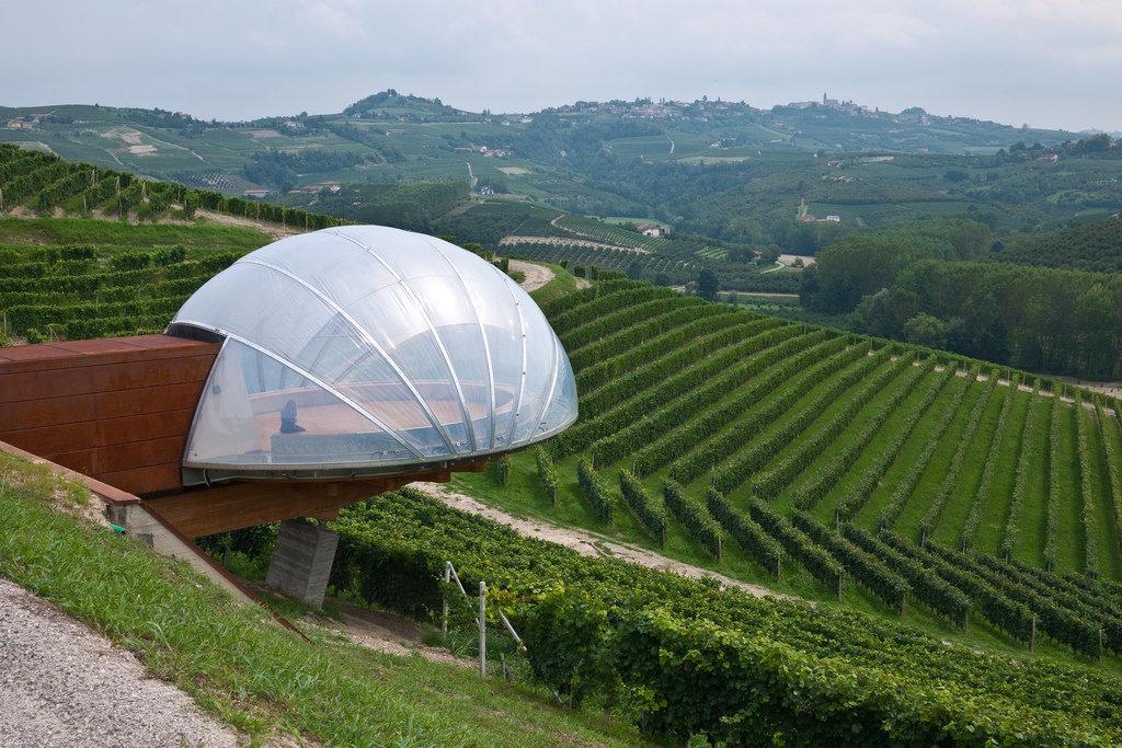 Винодельня Аcino
