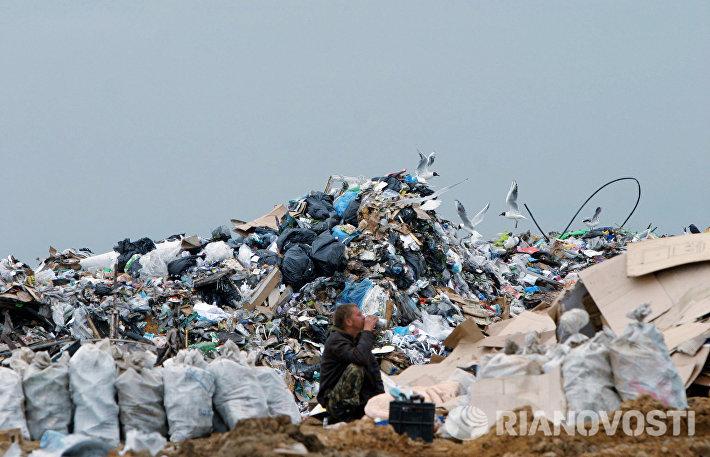 На полигоне промышленных отходов Саларьево под Москвой