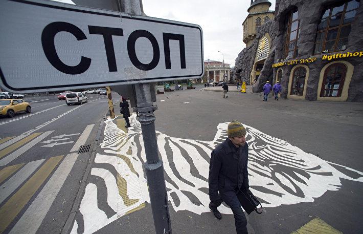 Пешеходный переход с рисунком зебры появился рядом с Московским зоопарком